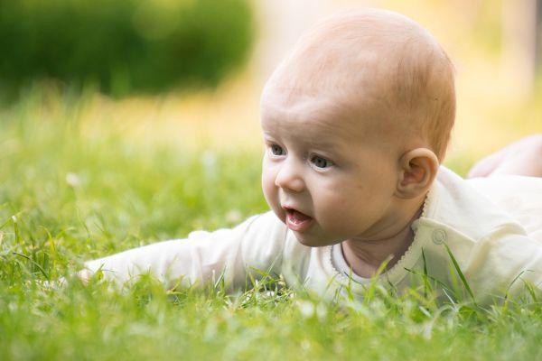 Babysaga i parken